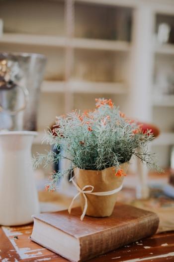 amanda-josh-green-gables-wedding-estate-san-marcos-diego-orange-county-los-angeles-southern-california-photographer-5854