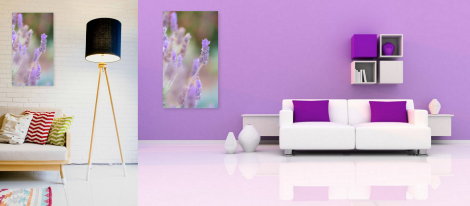 feature-image-lavender-wildflowers-1280x540