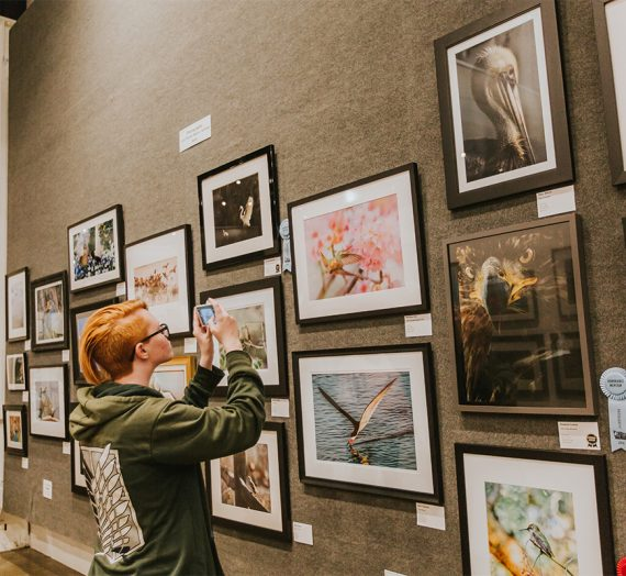 My Photography Exhibition at the Orange County Fair!
