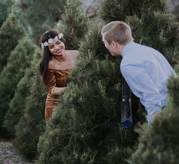 A Christmas Romance: Marisol & Nick