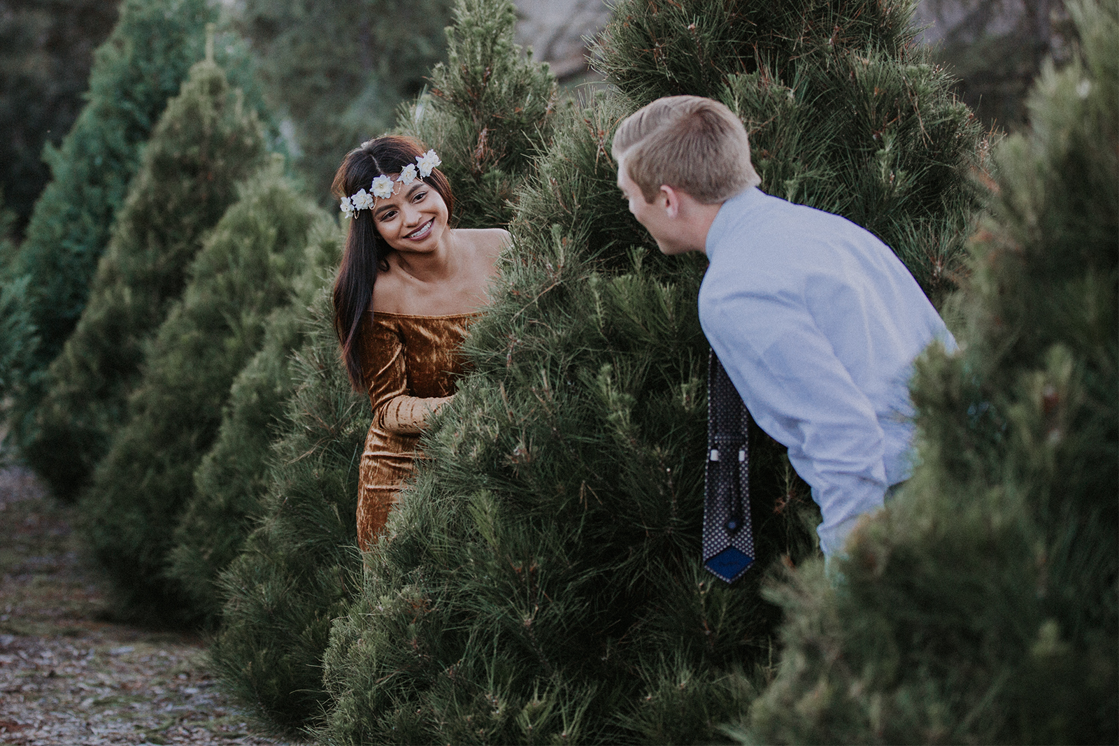 Christmas Tree Farm Mini Sessions.A Christmas Romance Marisol Nick